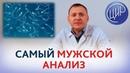 Анализы мужчин: спермограмма, гормоны, инфекции и другие. Рассказывает врач-андролог Севостьянов В.И
