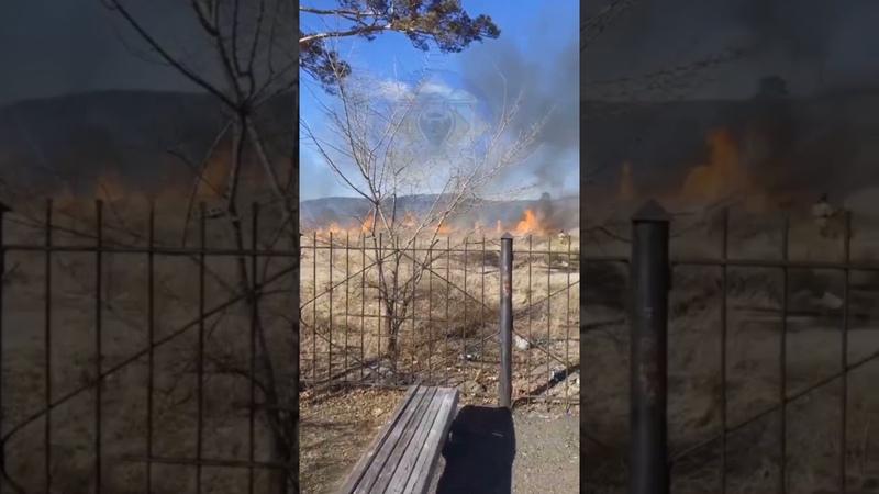МЧС тушат пожар на территории парка Халхин-Гол в Чите