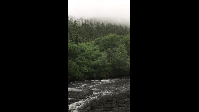 Горная река Поди. Утро.
