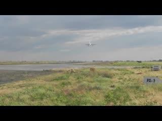 Летно-тактическое учение с эскадрильей стратегических ракетоносцев Ту-95МС в Сар