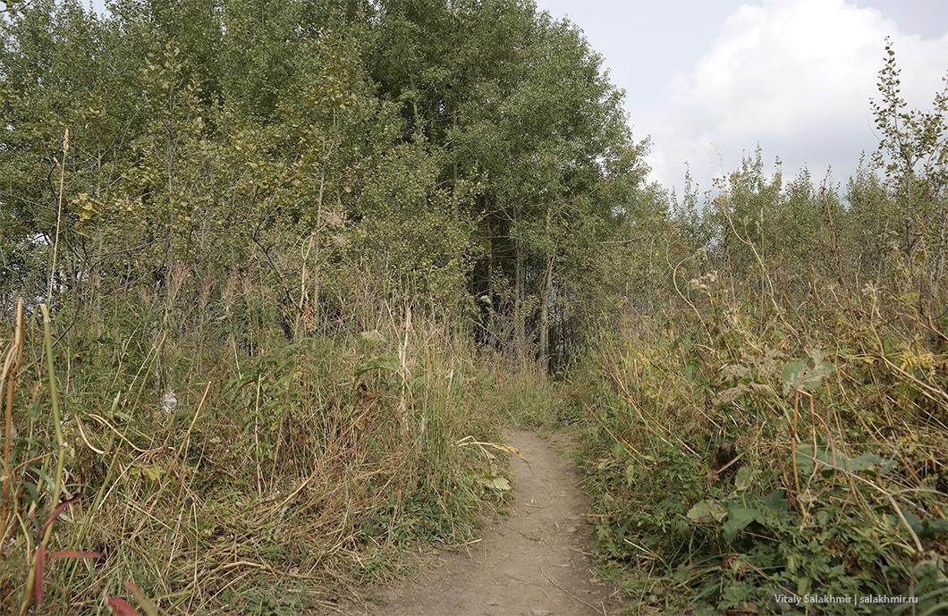 Осенние пейзажи в горах Алматы, Кок-Жайляу 2019