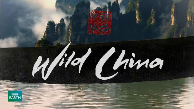 BBC: Дикий Китай 5 серия - Земля панды