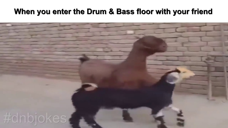 Drum Bass Jokes When you enter the dnb floor with your friend