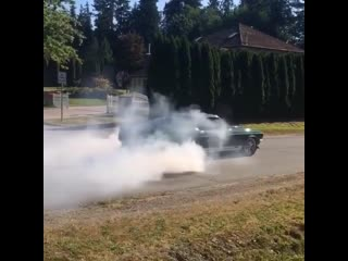 Mr.b auto classic mustang