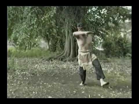 Пенчак Силат формальные упражнения №3 Pencak Silat Mande Mude Silat Jurus Harimau