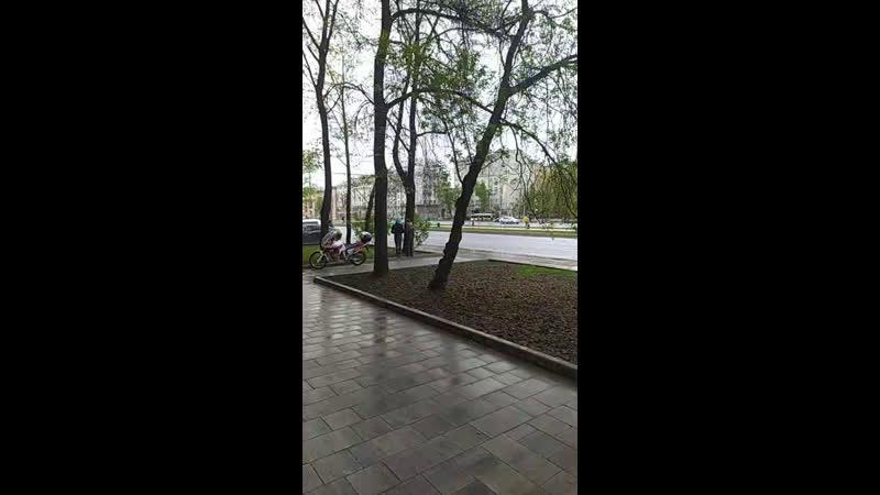 а в это время когда возлагаются цветы в александровском саду ленинградка