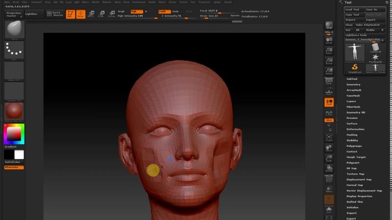 Creating a Genesis 3 Female facial morphs in ZBrush - Daz 3D