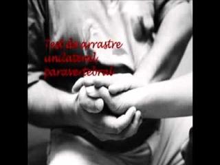 Copia de Conectivo Masaje (propiedad intelectual de Jaime Valenzuela Campillay