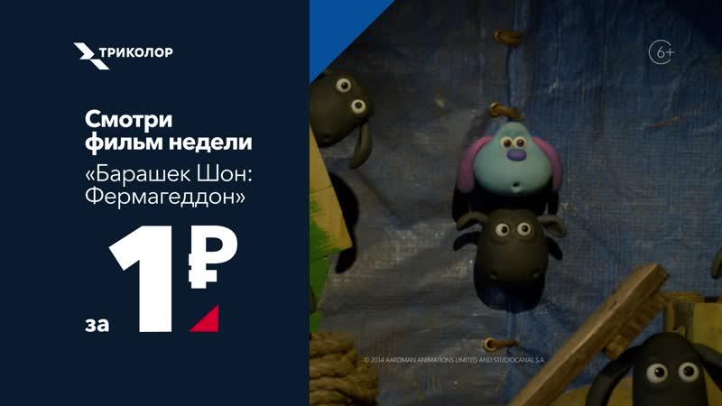 Смотри Барашек Шон Фермагеддон за 1 рубль