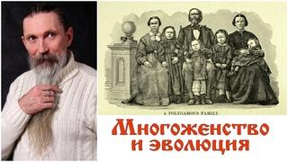 Трехлебов А.В. Многоженство и эволюция
