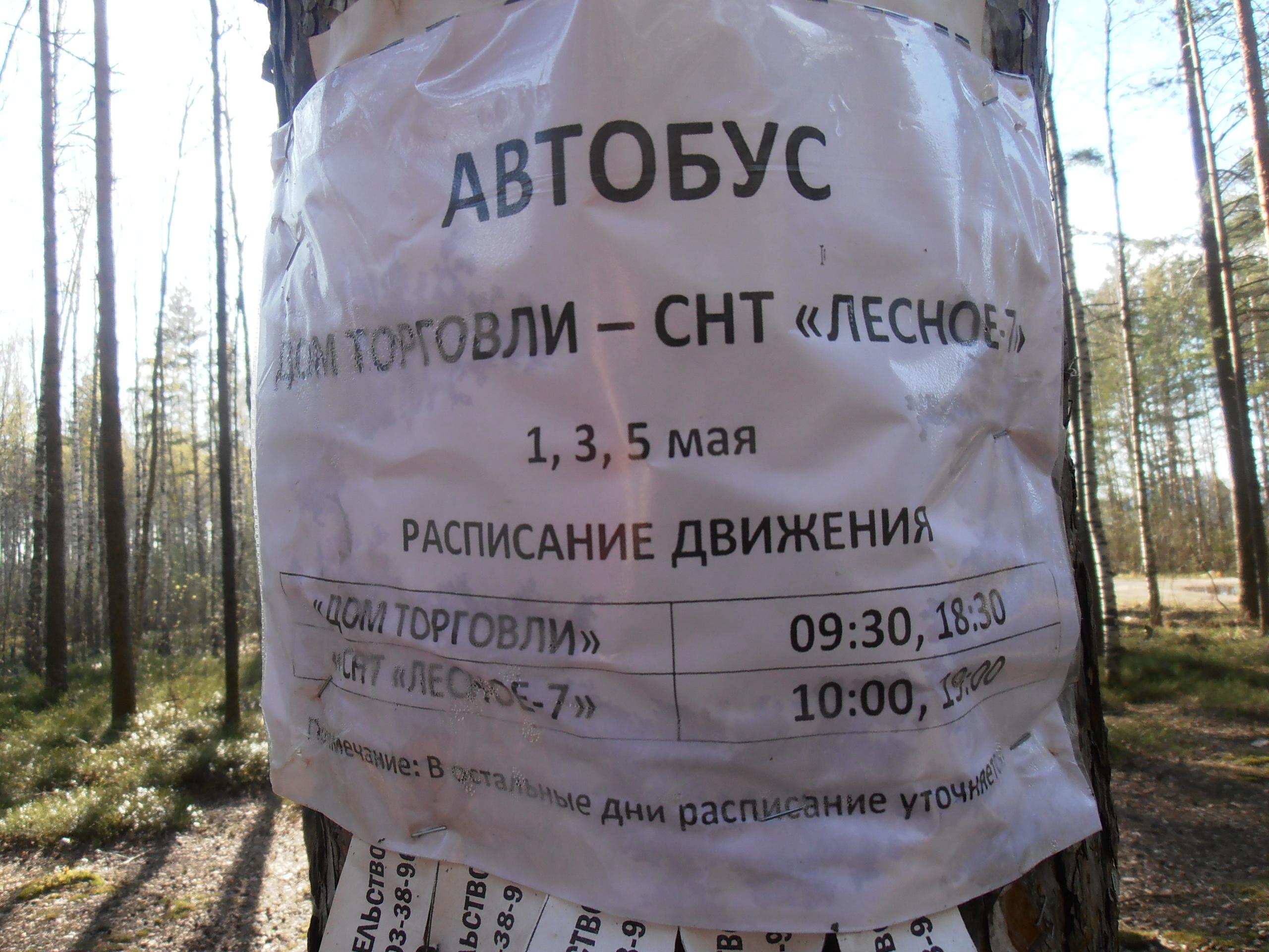 Автобус до СНТ