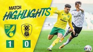 Норвич Сити 1-0 Ротерхэм (31 тур Чемпионшипа)