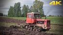 Легендарный гусеничный трактор ДТ-75 до сих пор пашет поля России
