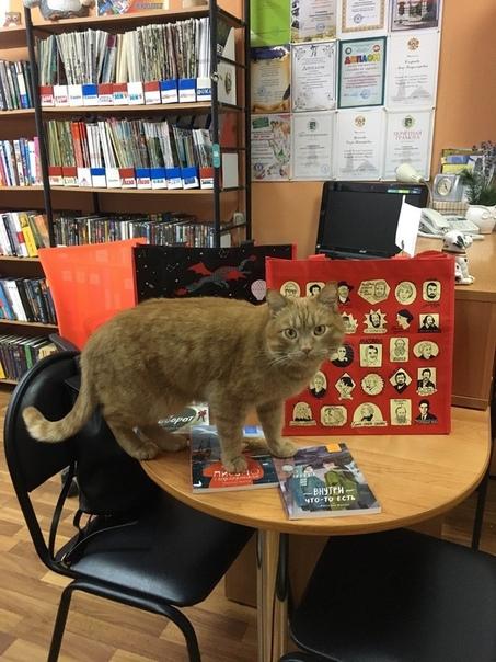 В библиотеке села Городня Тверской области работает кот Степан Он трудоустроен официально - должность называется SMM-мяунджер. Дети и взрослые в восторге. Степан тоже - зарплату он получает