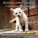 Фотоальбом Марины Караченцевой