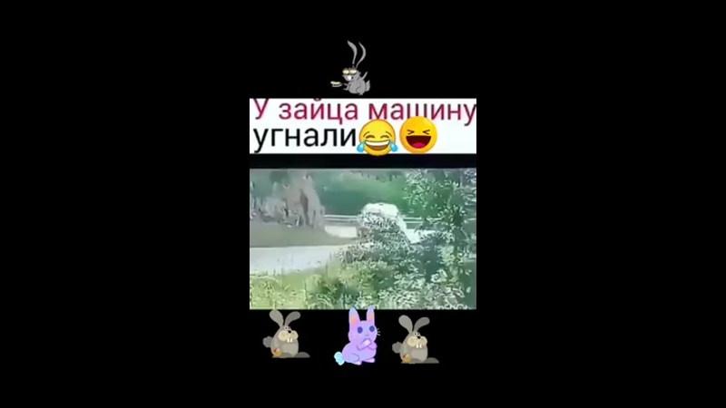 У зайца машину угнали! Думаю догонит))