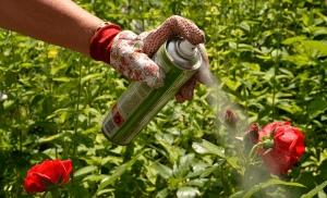 Каковы различные типы вредителей в саду?