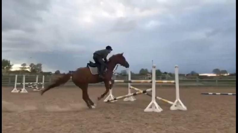 Видео от Дианы Антоновой