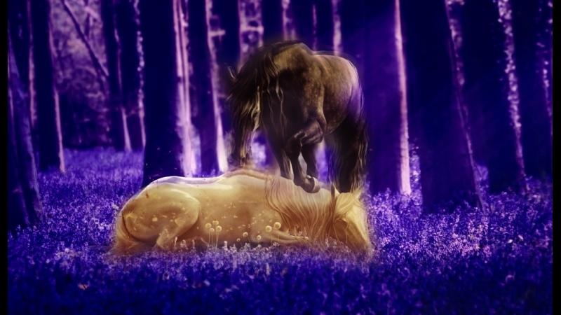 Сказка о лошадках и дружбе