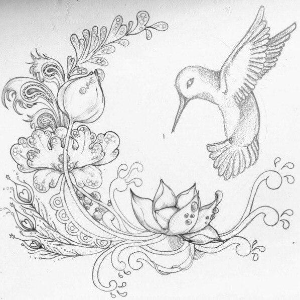 drawings of flowers - 736×679
