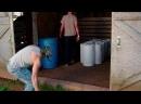 Парни из Трейлерпарка 11 сезон 2 серия SunshineStudio