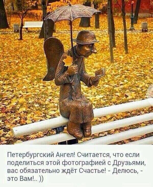 фото из альбома Елены Анисимовой №8