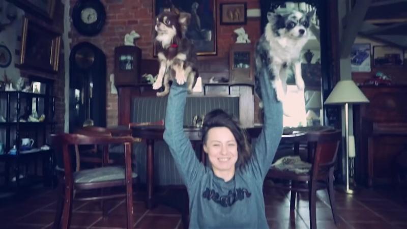 [Magic Family] ДОГА ЙОГА ЧЕЛЛЕНДЖ С СОБАКАМИ! Собаки и я пробуем собачью йогу догу