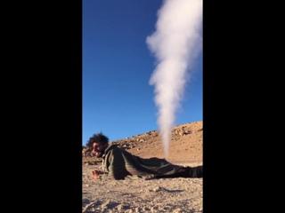 Thar She Blows! __ ViralHog
