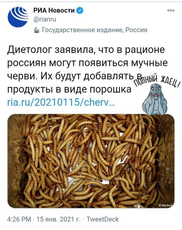 Новость взорвала интернет: Диетолог предрекла появление мучных червей в рационе россиян