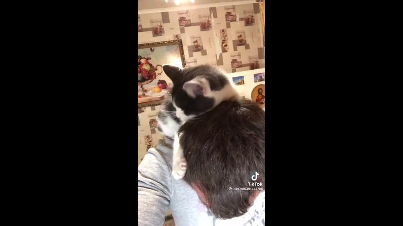 Ласковый котик!! 🥰