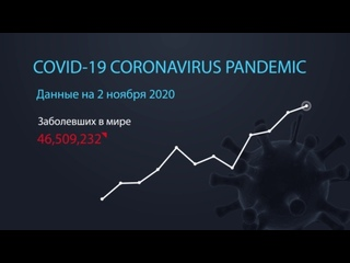Коронавирус. Информация на 2 ноября