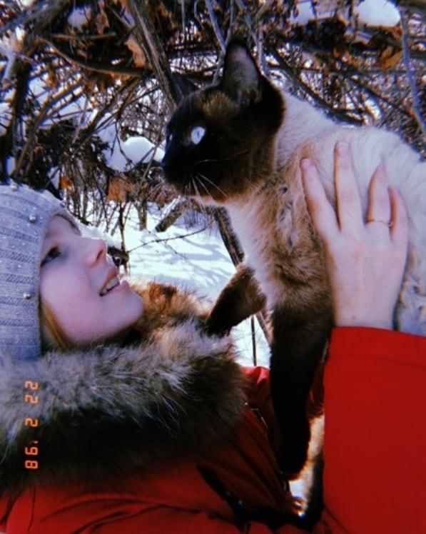 Первого марта отмечался Международный день кошек