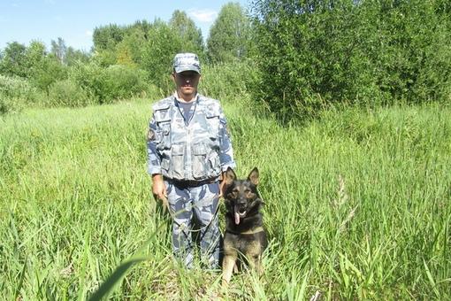 Собака помогла найти пропавшую женщину в Увинском