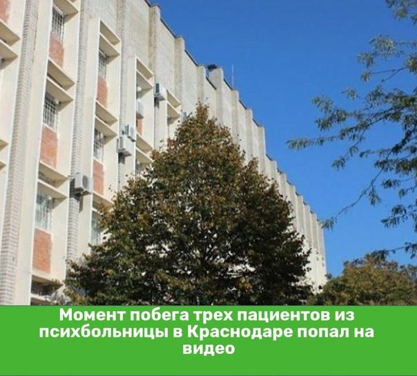 Момент побега трех пациентов из психбольницы в Краснодаре...