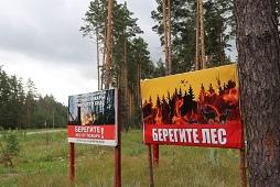 Безопасность лесов оценил глава региона Игорь Артамонов