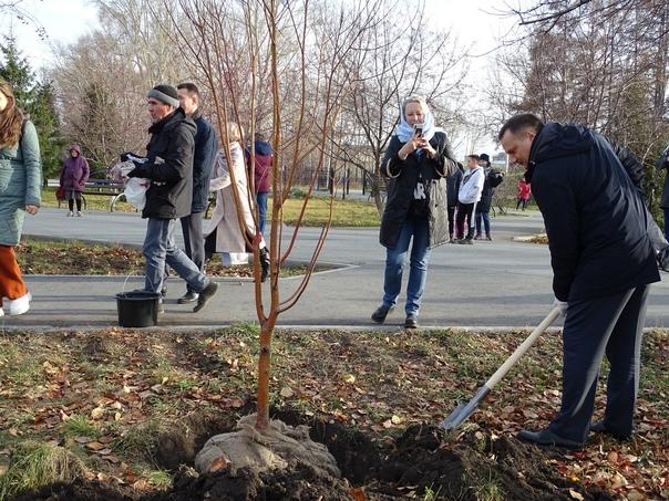 Министр ЖКХ Денис Архипов заложил «Аллею Единства»...