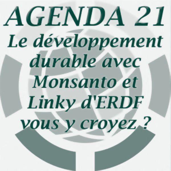 Que cachent l'Agenda 21 et l'Agenda 2030 des Nations Unies ?, image №2