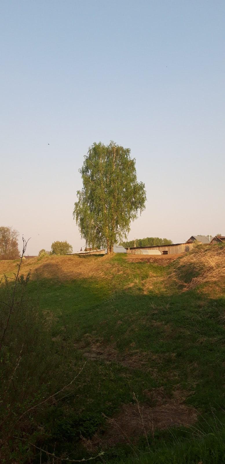 🌳Виды села Большая Кибья📸Эльвира Волкова#Природа_Родного_Можгинского_района #Можгинскийрайон #Красоты_Можгинского_района