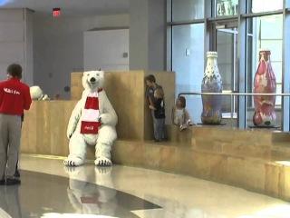 Playing peek-a-boo with Coca-Cola polar bear