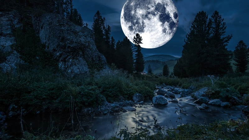 Soothing River Sounds Frogs and Beethoven's Moonlight Sonata 10 hours