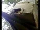 Пчеловод каскадер часть 2 Экстремальная съемка ловушки с бродячим пчелиным роем в лесу