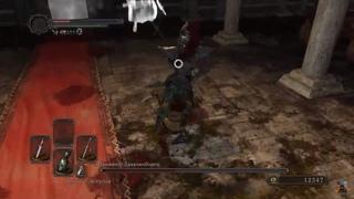 7. Какой же ты молодец, Рома! - Dark Souls 2 - Великое похождение