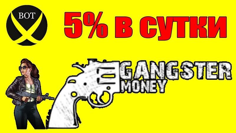 Фаст хайп Gangster Money 5% в сутки Заработок в интернете копилка для заработка