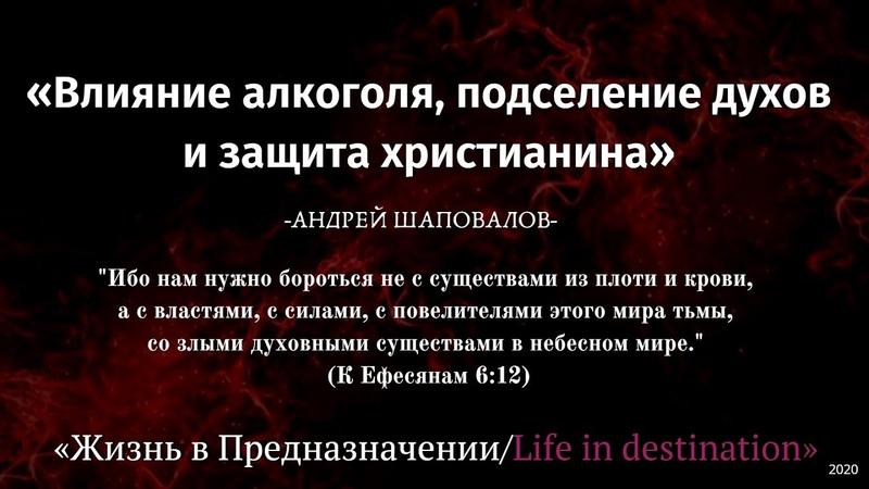 Влияние алкоголя подселение духов и защита христианина Андрей Шаповалов