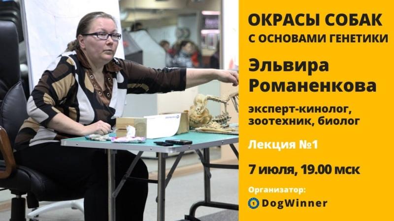 Окрасы собак с основами генетики Открытая лекция Эльвиры Романенковой