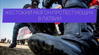 В Литве спецназ жёстко разогнал протестующих против размещения мигрантов.