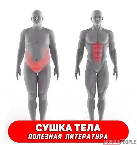 Сжечь Жир На Животе Видео. 10 быстрых упражнений, чтобы убрать жир с живота (наглядная демонстрация, нюансы и советы для хороших результатов)