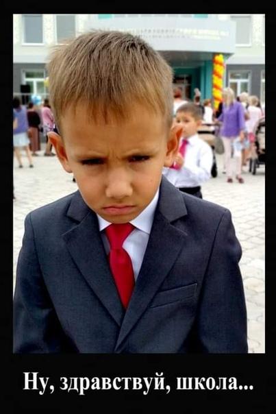 Здравствуй 1 сентября Недавно дядя ходил на родительское собрание в Zoom, далее его комментарий относительно всего услышанного:Вчера ходил в зум на родительское собрание. По ощущениям как