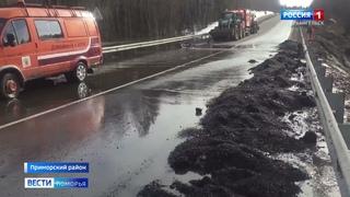 В Приморском районе на подъезде к аэропорту «Васьково» в выходные подтопило дорогу