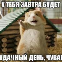Александр Максин, 605 подписчиков